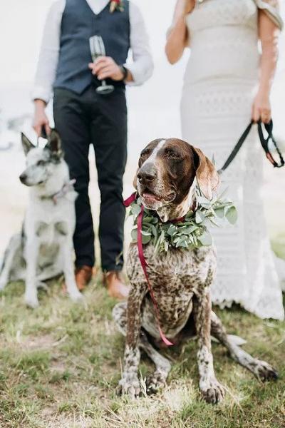 The-Posie-Place-Wedding-TashGreg-11